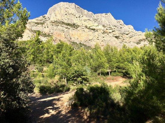 Montagne Sainte-Victoire : photo3.jpg