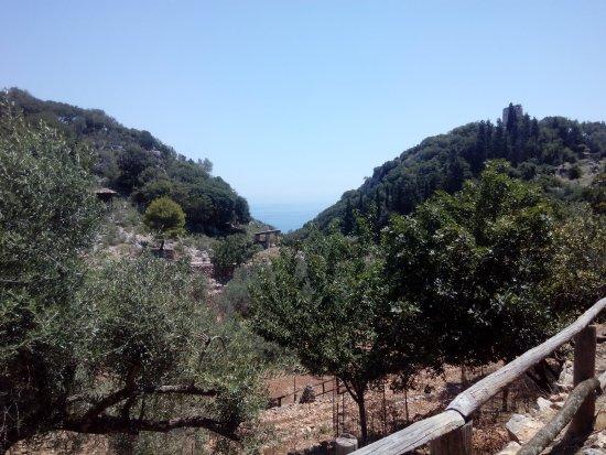 Volimes, Greece: В Парке инетересно не только смотреть и общаться с животными, но и любоваться природой