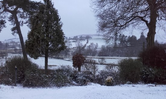 Llandrindod Wells, UK: This would be the view from the front rooms (on a snowy day of course!)