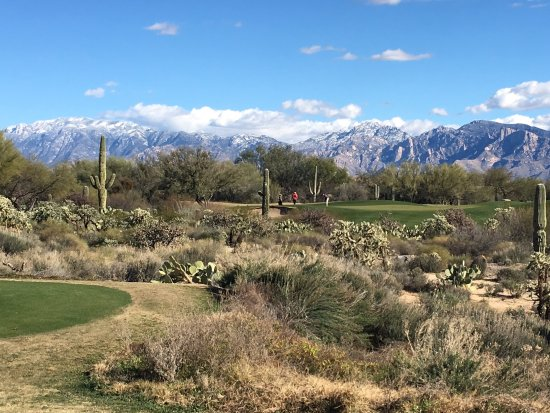 The Highlands at Dove Mountain Golf Course