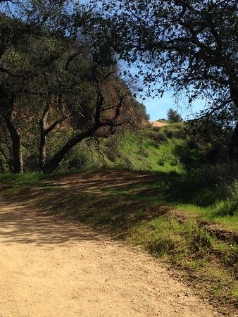 Claremont, CA: One of the great views along the trail.