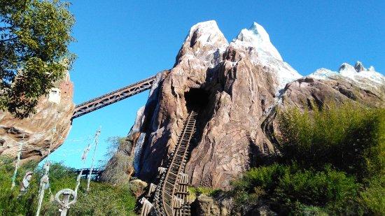 Disney's Animal Kingdom Villas - Kidani Village: Everest