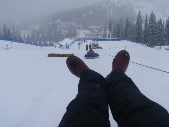 Silver Star, Canada: View from the tube, being pulled up hill!