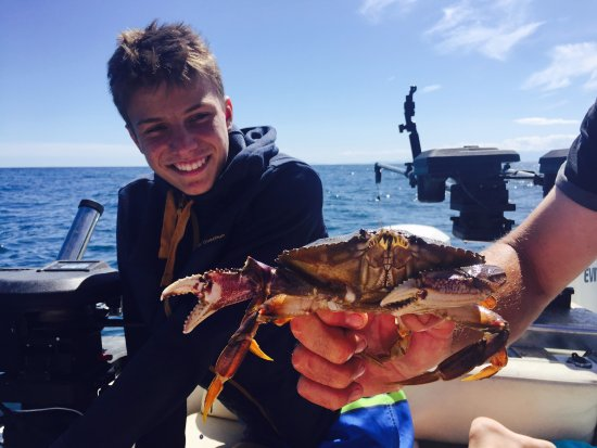 Gibsons, Canada: Crab