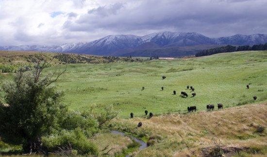 Omakau, New Zealand: Along the trail