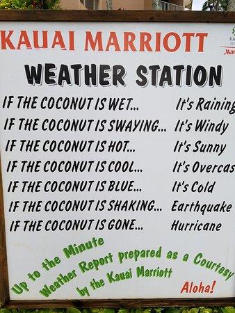 Marriott's Kaua'i Beach Club Photo