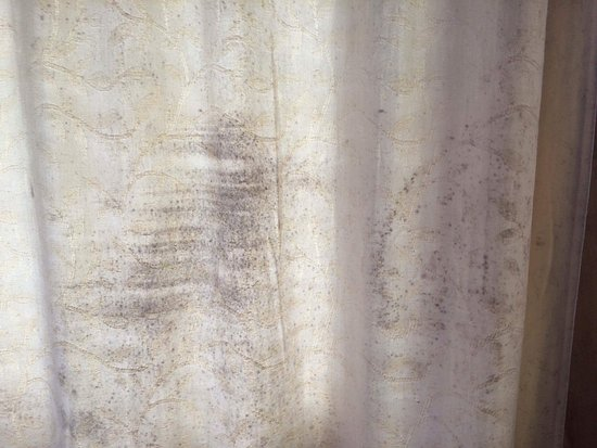 Warkworth, Nieuw-Zeeland: Black mould on curtains