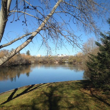 Wascana Centre Park: On a walk in Wascana Park in the fall of 2016