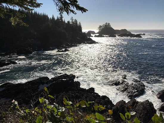 Ucluelet, Canada: photo1.jpg