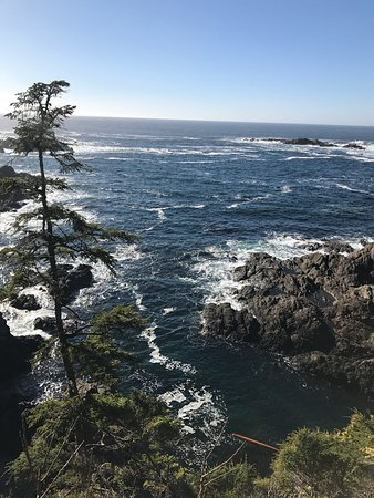 Ucluelet, Canada: photo3.jpg