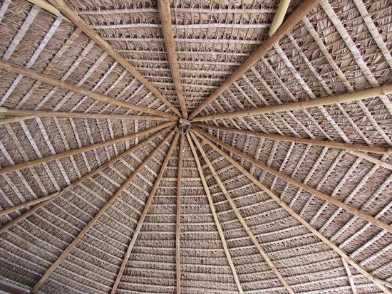 Hotel Selva Azul: Palapa Roof