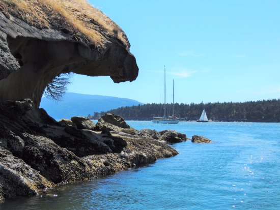 อีสต์ซาวน์, วอชิงตัน: Sucia Island, in the beautiful San Juan Islands of Washington State.