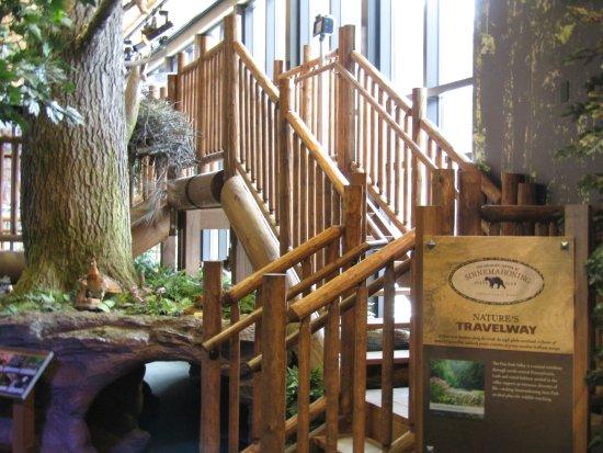 Austin, PA: Wildlife Center