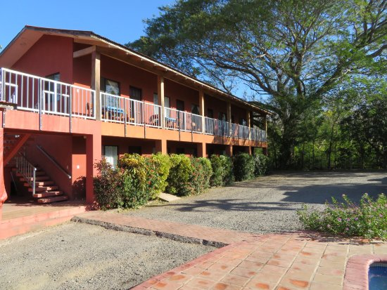 Cabinas Diversion Tropical: Our hotel with our gorgeous, giant Guanacaste tree.