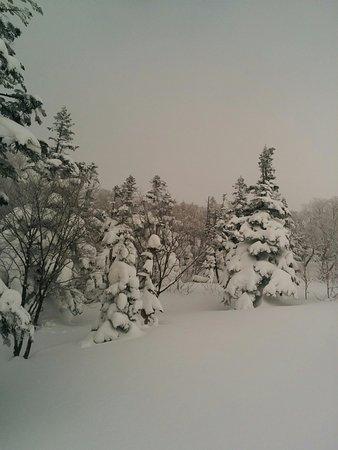 Amihari Onsen Ski Area: スキー場