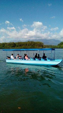 Quepos, Costa Rica : Mangrove boat tours
