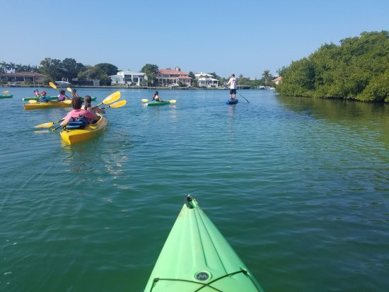half off 2be8a c84b8 Siesta Key Bike and Kayak - 2019 All You Need to Know BEFORE You Go (with  Photos) - TripAdvisor