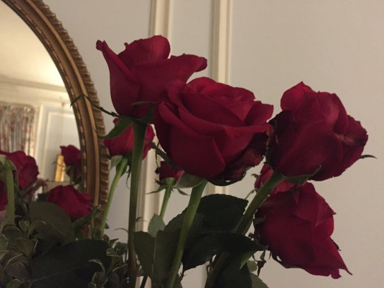 Blantyre: Roses for Valentine's day!