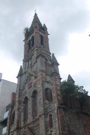 St. Joseph's Catholic Church : Greenery.