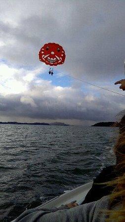 Flying Kiwi Parasail: UP UP AND AWAY!