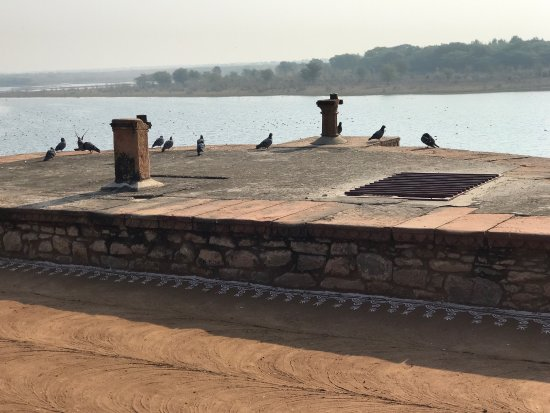 Chhatra Sagar: photo3.jpg