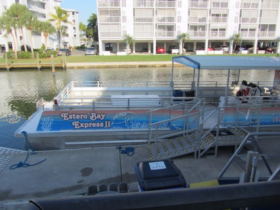 Estero Bay Express Dolphin & Sunset Boat Tours: The boat, with open seating, room to move around.