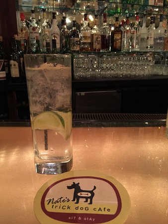 Irvington, VA: Vodka Tonic, made by an awesome Bartender, Dawn... Excellent!