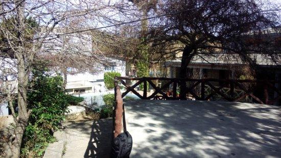 Trishul Orchard Resort: Snapshot of resort
