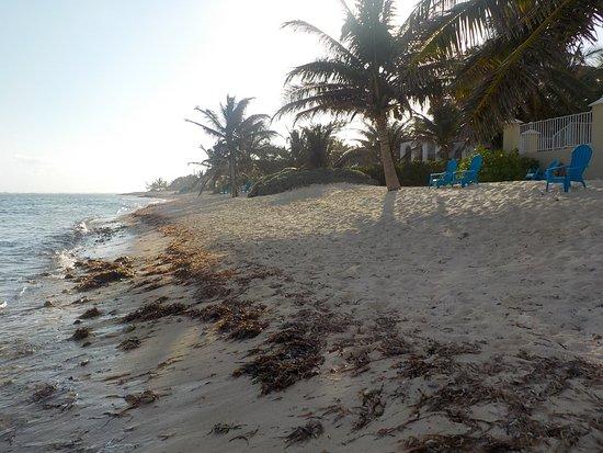 Bodden Town, Grand Cayman: Turtle Nest Inn Beach, looking west