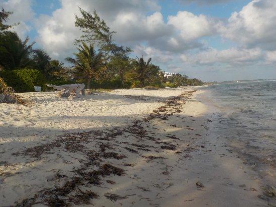Bodden Town, Grand Cayman: Turtle Nest Inn Beach, looking east