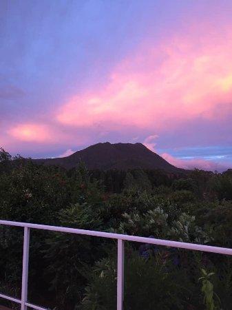 Kauri Point: photo0.jpg