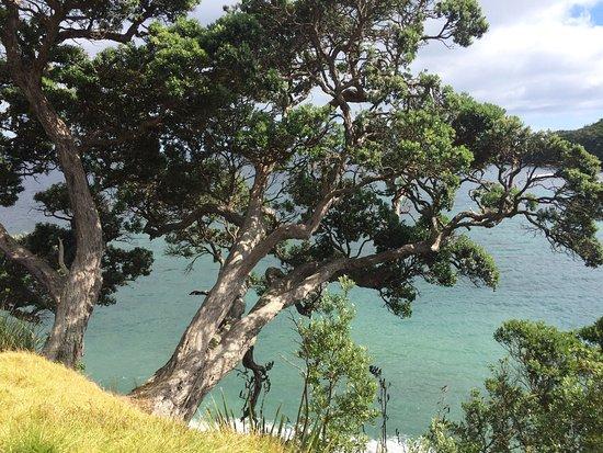 Warkworth, Selandia Baru: photo2.jpg