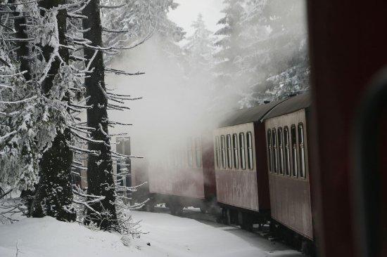Bad Suderode, Germany: Fahrt zum Brocken