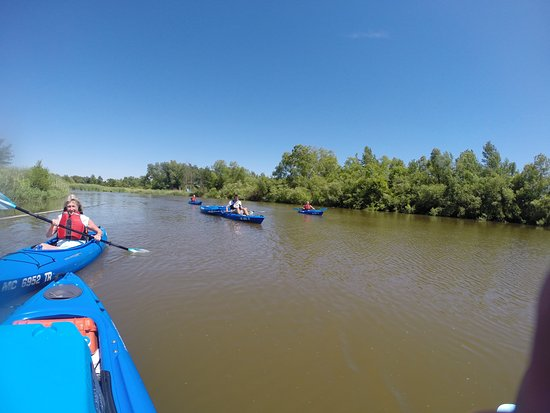 Kayaking on the Macatawa River with 1 Adventure Company