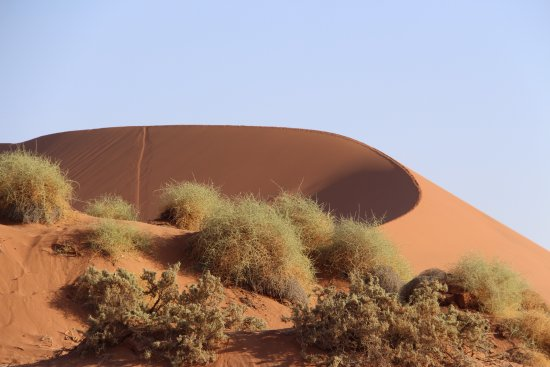Namib-Naukluft Park, Namibië: Our 'slide down' clearly marked!