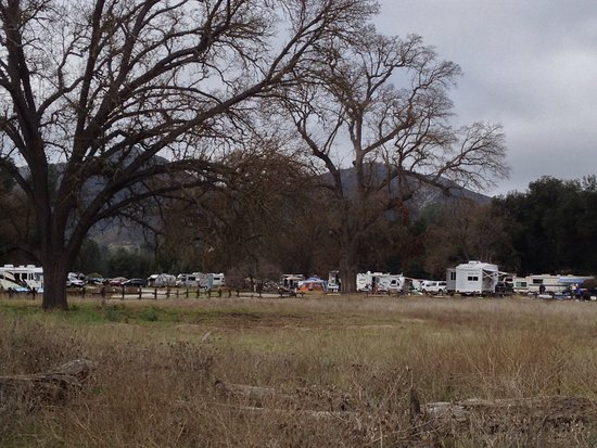 Pinnacles Campground Inc: There is a small store in the registration building but it has a surprising full selection of fo