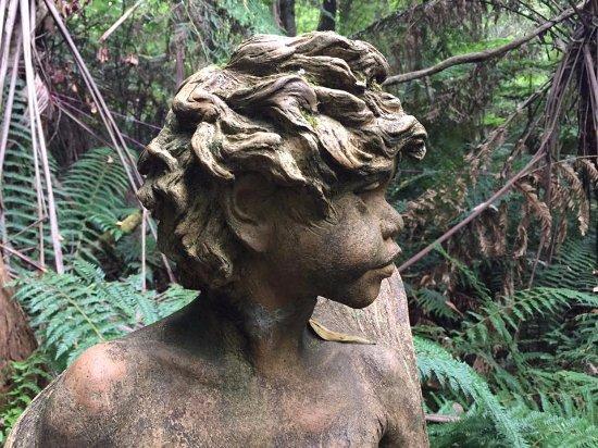 Mount Dandenong, Australia: Indigenous Boy
