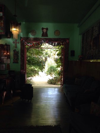 El Jardín de Frida: photo1.jpg