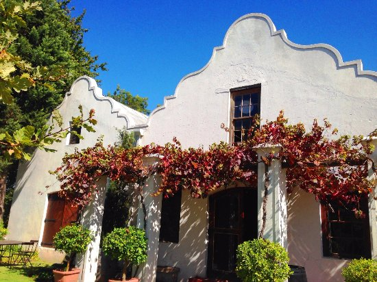 Paarl, Sudáfrica: Tasting room and outdoor seating area