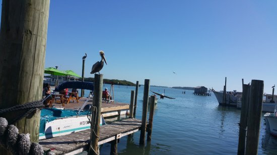 Cortez, FL: Every table has a wonderful view of the water.