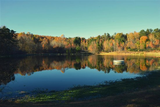 Hillsborough, NC: The larger of the two ponds, in Fall colors.