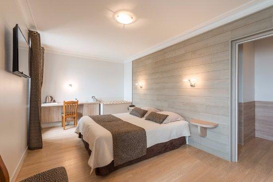Le Mesnil-en-Vallee, Γαλλία: chambre familiale vue sur loire