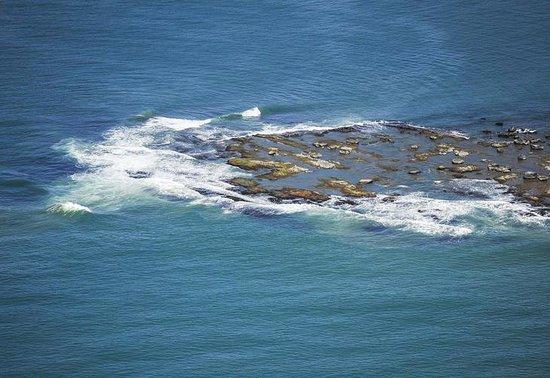 Ilha dos Lobos: Vista aérea da ilha - desconheço a fonte