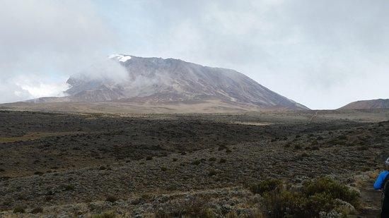 Kilimanjaro Region, Tanzanie : Kilimanjaro