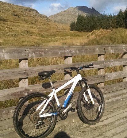 Argyll Bike Hire