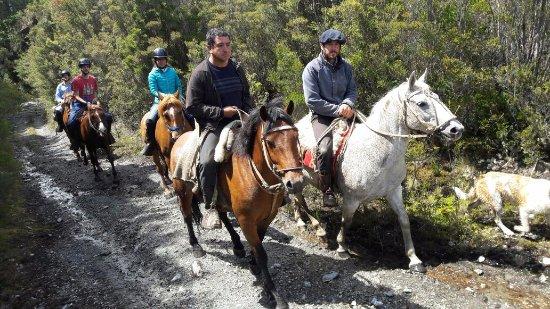 Cabalgata Fotos.Cabalgata Dia Completo Picture Of Cabalgatas Chiloe