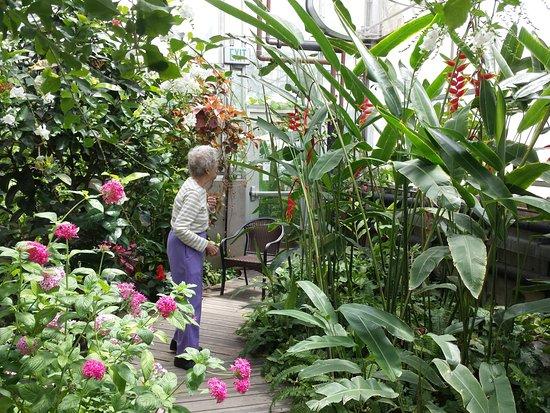 Western Colorado Botanical Gardens: Interior gardens