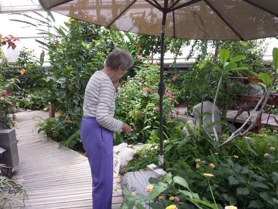 Western Colorado Botanical Gardens: Exotic plants