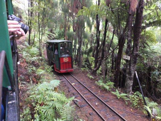 Coromandel, Nowa Zelandia: Driving Creek, second train following