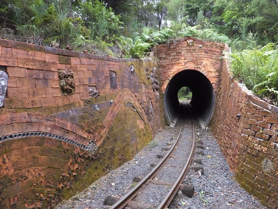 Coromandel, นิวซีแลนด์: Tunnel at Driving Creek railway